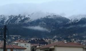 Έπεσαν τα πρώτα χιόνια: Στα «λευκά» Βελούχι και Παρνασσός – Δείτε εντυπωσιακές φωτογραφίες