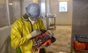 Γουϊνέα: Η μικρή Νούμπια νίκησε τον θανατηφόρο ιό του Έμπολα