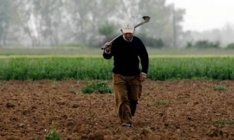 Την Παρασκευή (4/12) αρχίζει η καταβολή των επιδοτήσεων στους αγρότες