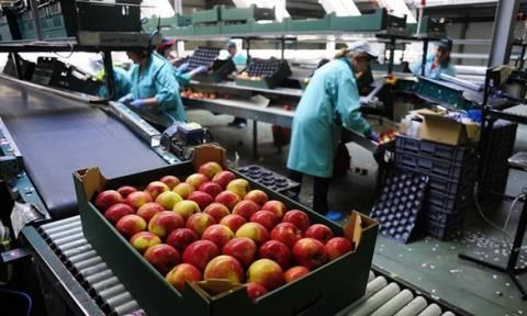 Συρρίκνωση της παραγωγής στις εταιρείες του μεταποιητικού τομέα