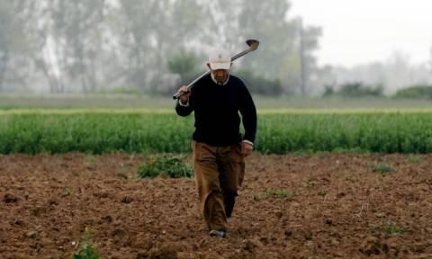 Κατέστρεψαν τους αγρότες και δίνουν και τη χαριστική βολή