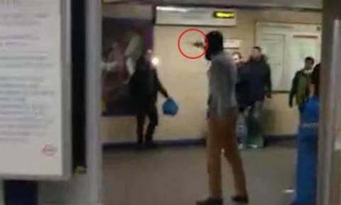 Τρόμος στο Λονδίνο: Άνδρας έκοψε το λαιμό επιβάτη φωνάζοντας «για τη Συρία» (video)