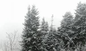 Η κακοκαιρία ξεκίνησε... Χιονίζει στα Τρίκαλα (Photos)