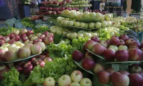 ΕΤΕ: O αγροδιατροφικός τομέας μπορεί να φέρει 1,2 δισ. ευρώ ετησίως