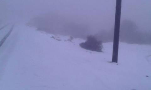 Χιόνισε στο «Κορίτσι» του Ψηλορείτη! (photos)