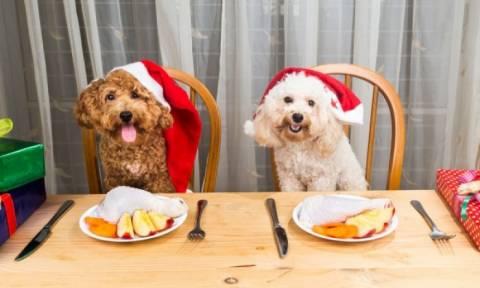 Οι TOP κανόνες για επιτυχημένη δίαιτα πριν τα Χριστούγεννα