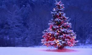 Έτοιμοι για τις Χριστουγεννιάτικες διακοπές; Τι πρέπει να προσέχετε!