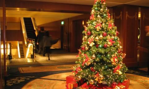 Εσείς πόσα χρήματα θα δίνατε για ένα χριστουγεννιάτικο δέντρο; (photos)