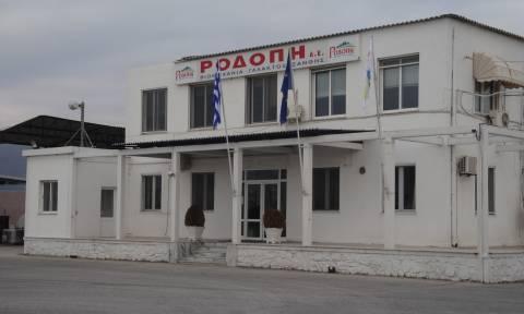 Γαλακτοβιομηχανία «Ροδόπη»: Συμφωνία για επαναπρόσληψη απολυμένων
