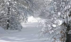 Έρχεται «μετεωρολογική βόμβα» την Πρωτοχρονιά - Θα χιονίσει σε Αθήνα και Θεσσαλονίκη;