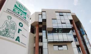 ΟΓΑ: Πότε θα δοθεί το βοήθημα των 1000 ευρώ