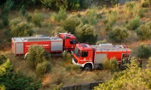 Μεγάλη φωτιά στο Ναύπλιο καίει αγροτοδασική περιοχή