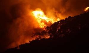 Πύρινη κόλαση στην Αυστραλία: Μαίνονται πυρκαγιές από τις 19 Δεκεμβρίου (Vid)