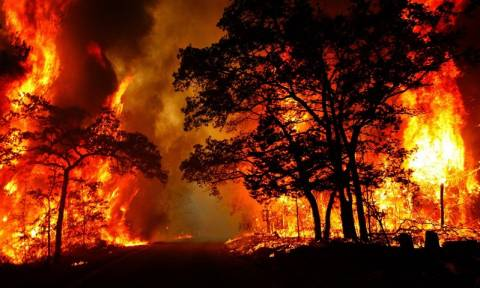 Ισπανία: Πύρινος εφιάλτης εν μέσω χειμώνα – Μάχη με 120 μέτωπα πυρκαγιών (Pics & Vid)