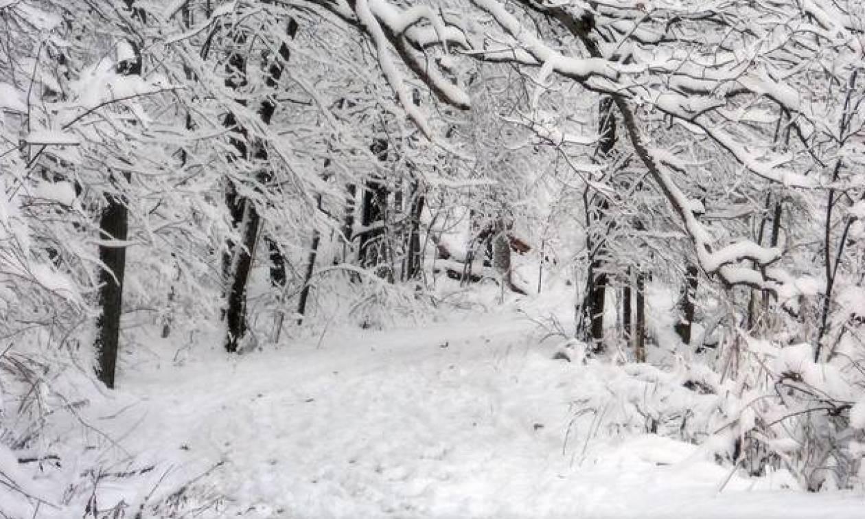 Ετοιμαστείτε για πολικό ψύχος! Δείτε τις πόλεις που θα «χτυπήσει» ο χιονιάς την Τετάρτη