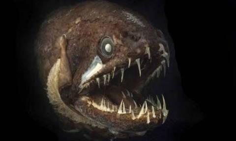 Τα πιο τρομακτικά προϊστορικά τέρατα! Αντέχετε να τα δείτε; (video)