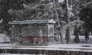 Ραγδαία επιδείνωση του καιρού τις επόμενες ώρες - Κρύο και πολικό ψύχος θα σαρώσει τη χώρα (pics)