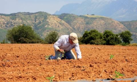 Επί τάπητος ο πρωτογενής τομέας στην 26η έκθεση Agrotica