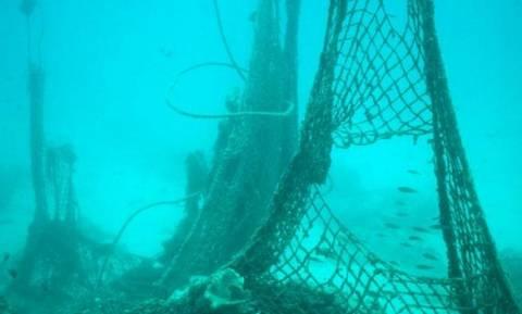 Χαμός στη Λευκάδα: Η ψαριά που κάνει το γύρο του διαδικτύου (photos)