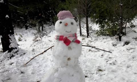 Νέο κύμα κακοκαιρίας «χτυπάει» τη χώρα - Δείτε που θα χιονίσει σήμερα Πέμπτη