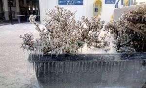 Στον πάγο το Τελωνείο των Κήπων στον Έβρο! (photos)