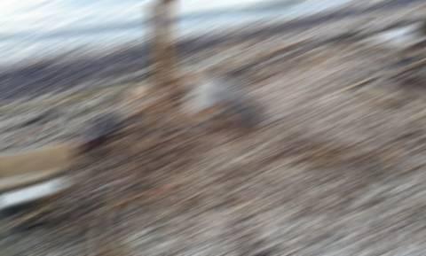 Σκληρές εικόνες σε παραλία της Πάτρας
