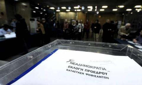 Αποτελέσματα εκλογών ΝΔ: Νίκη Μητσοτάκη σε Θεσπρωτία και Ιωάννινα