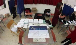 Αποτελέσματα εκλογών ΝΔ: Τα τελικά αποτελέσματα στην Αρκαδία