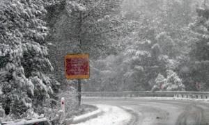 O φετινός Φεβρουάριος ο βροχερότερος του αιώνα; (photo)