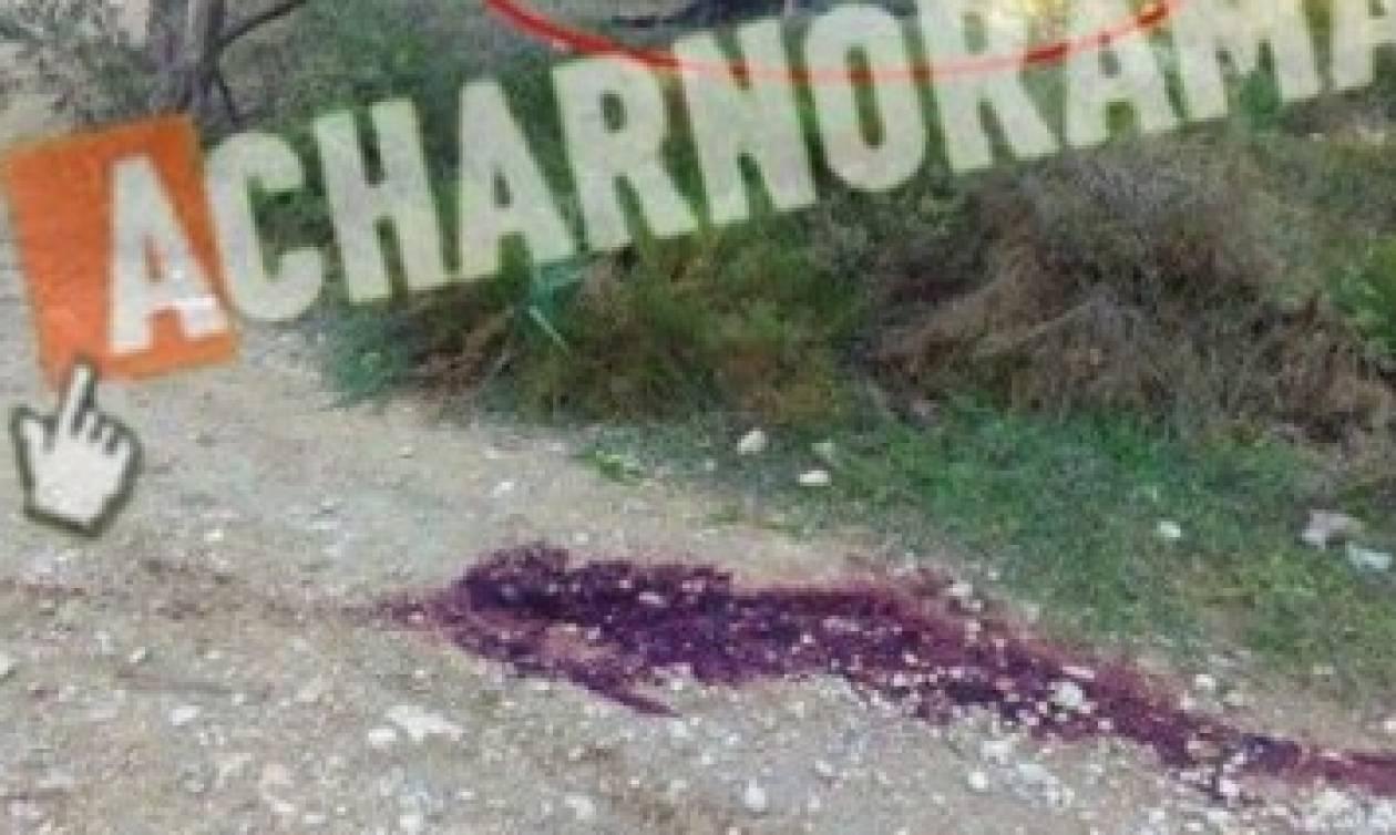 ΠΡΟΣΟΧΗ – ΠΟΛΥ ΣΚΛΗΡΕΣ ΕΙΚΟΝΕΣ - Φωτογραφίες από το άγριο έγκλημα στην Βαρυμπόμπη