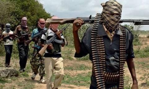 Καμερούν: 1.200 νεκροί σε επιθέσεις της Μπόκο Χαράμ από το 2013