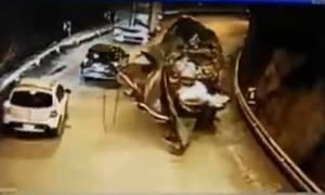 Απίστευτες εικόνες: «Τρελό» φορτηγό εισβάλλει σε τούνελ με τα φρένα… σπασμένα! (video)