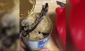 Η απόλυτη αηδία: Δε φαντάζεστε τι βρήκε μέσα στην κονσέρβα (video)