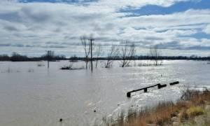 Κακοκαιρία – Έβρος: Συναγερμός για τη στάθμη του ποταμού