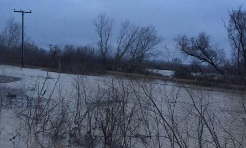 Κακοκαιρία - Έβρος: Προβλήματα από τις έντονες βροχοπτώσεις σε Σουφλί, Διδυμότειχο, Ορεστιάδα (pics)