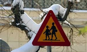 Κακοκαιρία: Κλειστά τα σχολεία σε Φλώρινα
