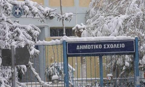 Κακοκαιρία: Σε ποιες περιοχές είναι κλειστά τα σχολεία