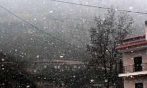 Χιονιάς εξπρές στην Αττική: Πρόβλεψη του καιρού από τον Τάσο Αρνιακό