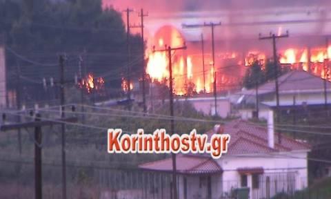 Μεγάλη φωτιά σε εργοστάσιο στην Αρχαία Κόρινθο - Δείτε συγκλονιστικές εικόνες (pics)