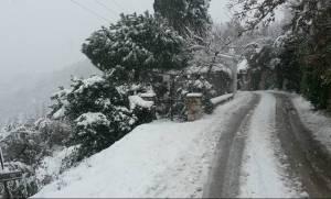 Κακοκαιρία: Η Σκόπελος ντύθηκε στα λευκά! (vid+pics)