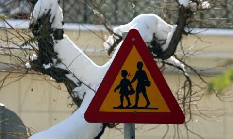 Δείτε ποια σχολεία θα μείνουν κλειστά λόγω της κακοκαιρίας σήμερα (19/1)
