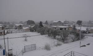 Καιρός: Συνεχίζεται και σήμερα (19/1) η κακοκαιρία – Δείτε πού θα χιονίσει (pics)