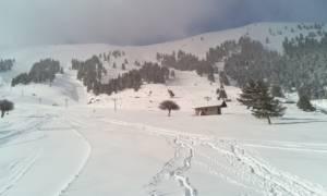 Καιρός - Μαγεία: Δείτε LIVE ΕΙΚΟΝΑ από τα χιόνια σε κάθε γωνιά της Ελλάδας!