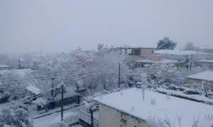 Καιρός: Στην «κατάψυξη» η Μακεδονία – Σε ποια πόλη ο υδράργυρος έδειξε -12 βαθμούς