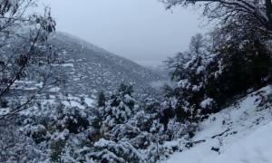 Κακοκαιρία: Στην κατάψυξη η χώρα – Σε ποιες περιοχές θα χιονίσει!