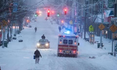 Δείτε τι έγραψε στα χιονισμένα αυτοκίνητα η κορυφαία Ελληνίδα Σεφ στη Νέα Υόρκη, Μαρία Λόη!(photos)
