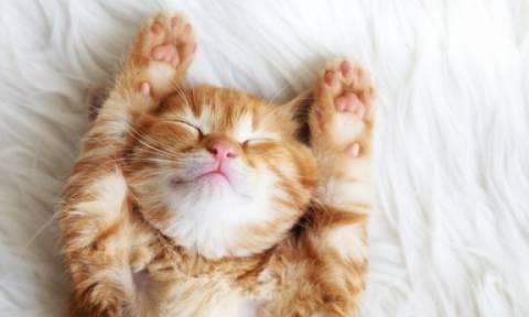 Με ποια προβλήματα υγείας συνδέεται κάθε στάση στον ύπνο