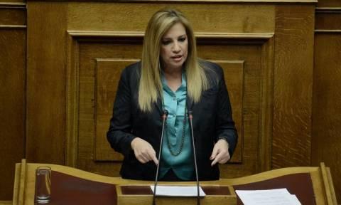 Βουλή - Ασφαλιστικό - Γεννήματα: «Έχετε 153 βουλευτές… ιδού η Ρόδος, θα σας κρίνει η ιστορία»