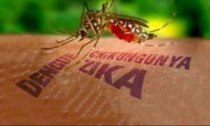 Ταξιδιωτικές οδηγίες του ΚΕΕΛΠΝΟ για τον ιό Ζίκα!