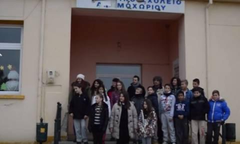 Φλώρινα: Πανευρωπαϊκή διάκριση δημοτικών σχολείων σε διαγωνισμό Νανοτεχνολογίας (vid)